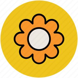 beauty, flower, round, shape icon