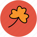 clover, clover leaf, leaf, nature, single object icon