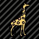 africa, animal, giraffe, toy, zoo