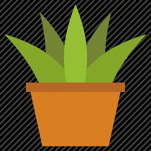 green, plant, school, school supplies, tree pot icon