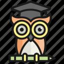wisdom, education, owl, knowledge, school, university