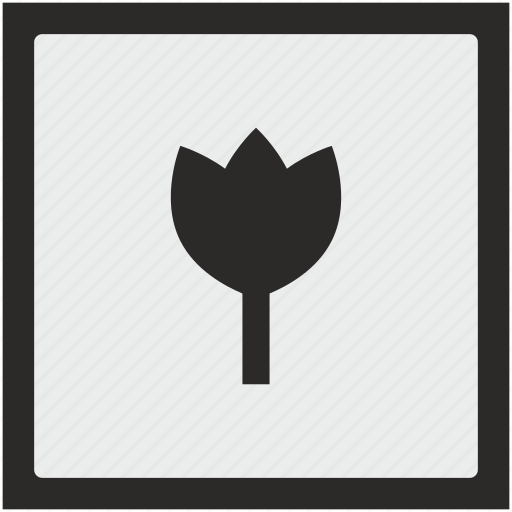 bud, flower, function, plant, square icon