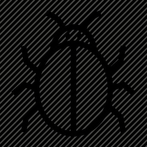 bug, insect, malware, trojen, virus icon