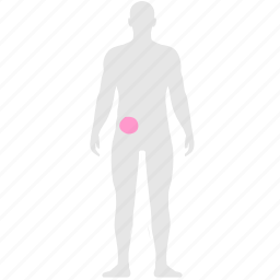 blood, body, health, human, liver, organ, pain icon