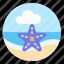 animal, ocean, sea, sea star, starfish