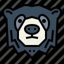 spectacled, bear, wildlife, mammal, animal
