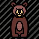 bear, wildlife, mammal, animal, zoo