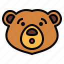 bear, wildlife, mammal, animal, zoo, shocked