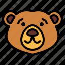 bear, wildlife, mammal, animal, zoo, smile