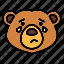 bear, wildlife, mammal, animal, zoo, sad