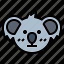 koala, bear, wildlife, mammal, animal