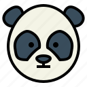 panda, bear, wildlife, mammal, animal