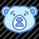 bear, wildlife, mammal, animal, zoo, alarmed