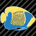 angelfish, animal, blue, girdled, ocean, reef, sea icon