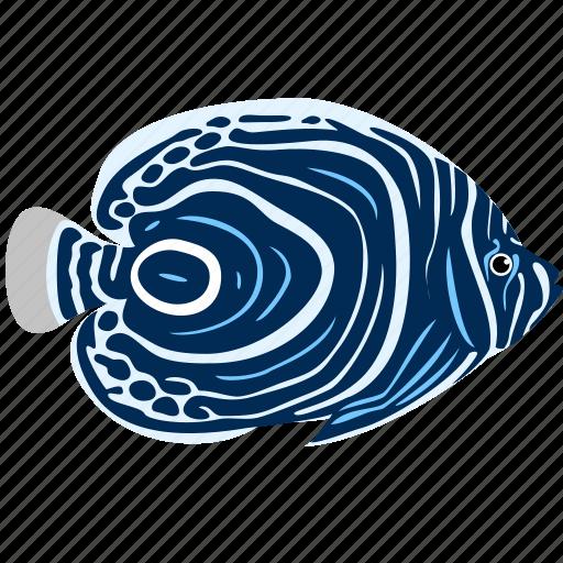 angelfish, animal, emperor, ocean, reef, sea icon