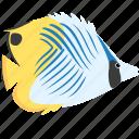 animal, butterfly, fish, ocean, reef, sea, threadfin icon