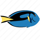 animal, blue, dory, fish, ocean, sea, tang icon