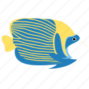 angelfish, animal, emperor, ocean, reef, sea icon