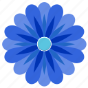 blue, flower, bud, plant