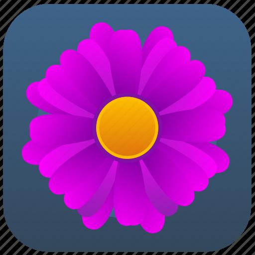 bloom, flower, plant, violet icon