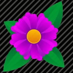 astra, flower, leaf, violet icon