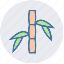 bamboo, beauty, green, plant, spa, wellness icon