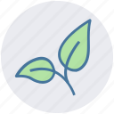 bio, eco, green, leaf, nature, organic, plant icon