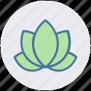 american lotus, beauty, flower, lotus, relax, spa, wild spring flower icon