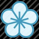 beauty, floral, flower, plant, spa, treatment