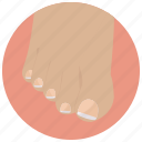 beauty, foot, nails, pedicure, spa, toes, wellness