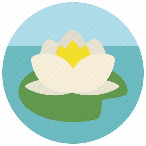 beauty, flower, lily, lotus, spa, water, wellness icon
