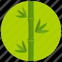 bamboo, beauty, green, plant, spa, wellness