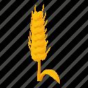 cartoon, crop, harvest, isometric, plant, seed, wheat