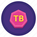 data, storage, terabyte icon