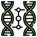 cloning, dna, biology, electronics, education, science