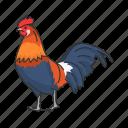 domestic animal, bird, gallinaceous bird, cock, chicken, animal