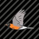 animal, baltimore oriole, bird, ochre oriole, passerine bird icon