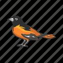 animal, bird, ochre oriole, orchard oriole, oriole, passerine bird icon