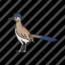 chaparral cock, cock, flying creature, roadrunner, roadrunner bird icon