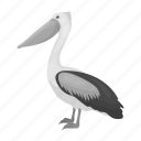 animal, bird, exotic, feathered, pelican, wild, zoo icon