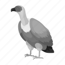 animal, bird, exotic, feathered, predator, vulture, wild icon