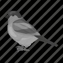 animal, bird, feathered, sparrow, wild, zoo icon