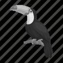 animal, bird, exotic, feathered, toucan, wild, zoo icon