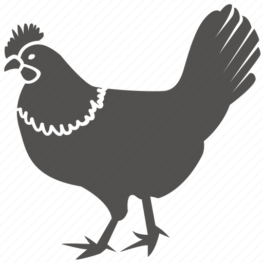 bird, chicken, cock, fowl, kfc, poultry, rooster icon