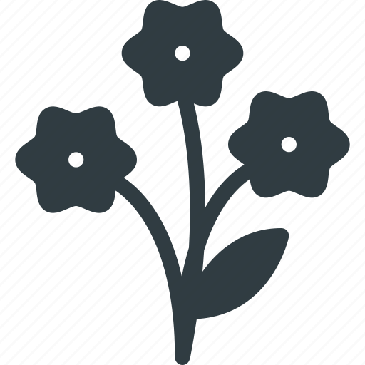 borthday, celebration, flowers, gift, present icon