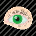 cartoon, eye, eyelash, human, iris, optical, vision