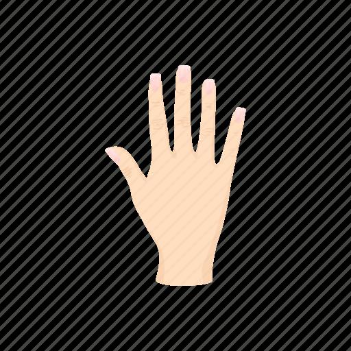 arm, cartoon, finger, hand, human, palm, person icon