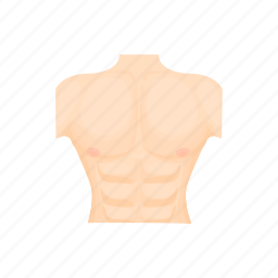 body, cartoon, chest, human, male, muscle, torso icon