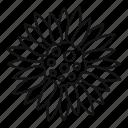 card, composition, crop, decor, element, rustic, sunflower