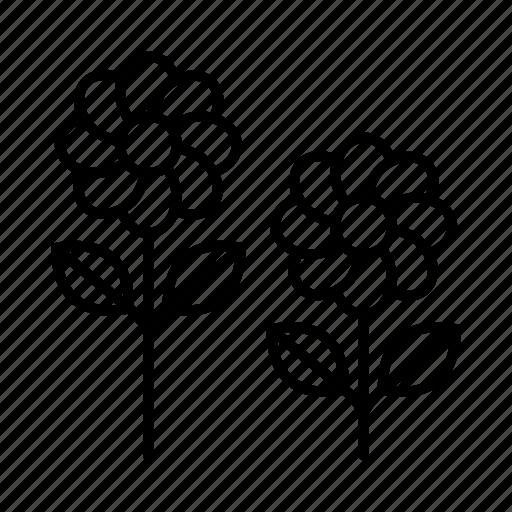 Botanical, botanics, florist, flowers, garden, nature, spring icon - Download on Iconfinder